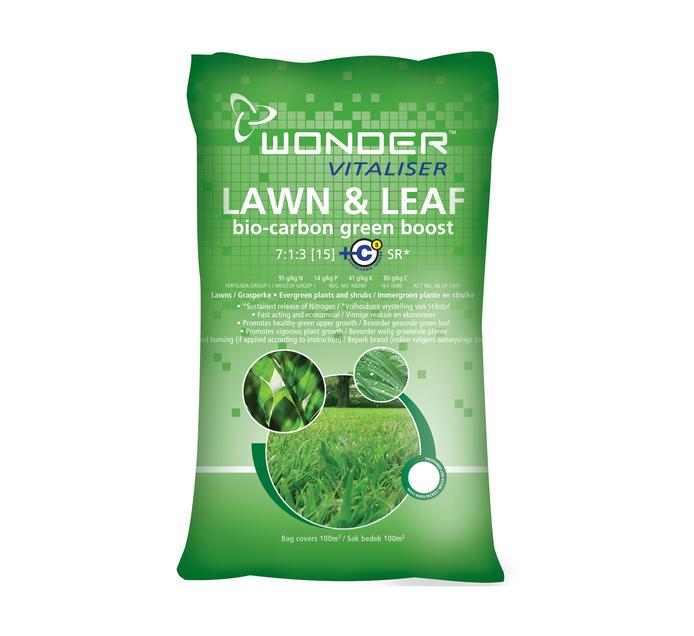 EFEKTO 20kgs Lawn Fertilizer