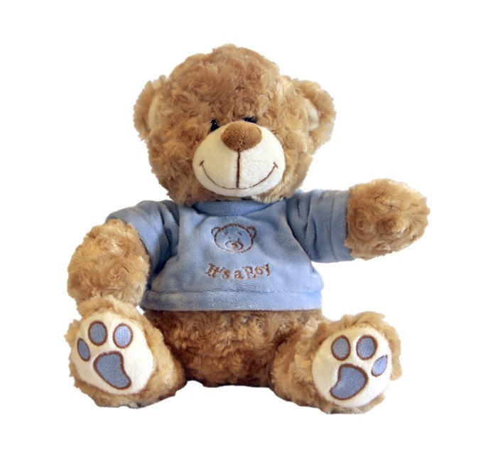 25cm Its A Boy Bear Plush