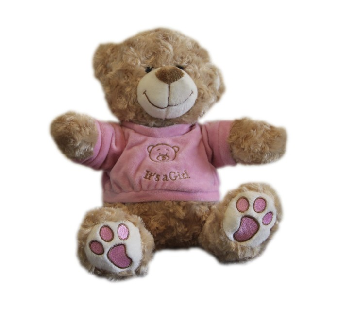 25cm Its A Girl Bear Plush