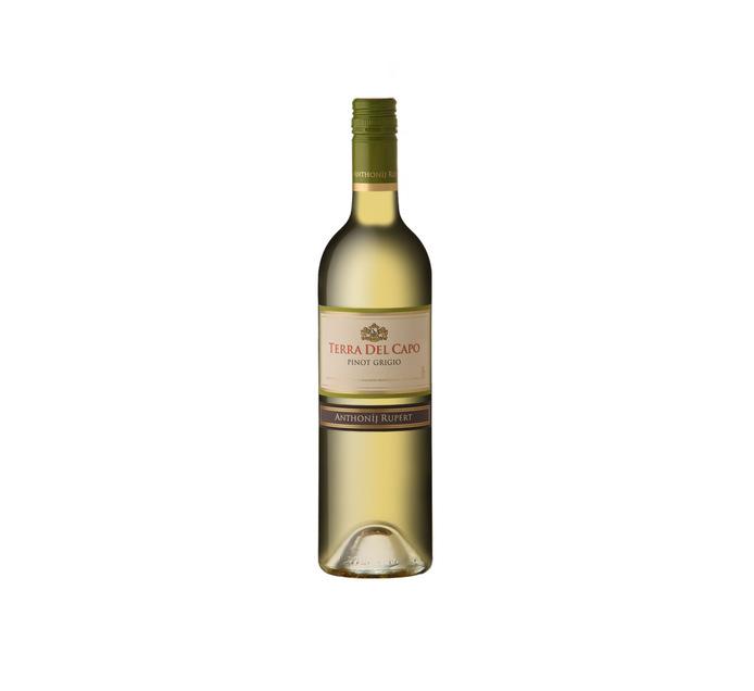 TERRA DEL CAPO Pinot Grigio (1 x 750ml)